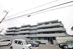 屋島ロイヤルハイツ[2階]の外観