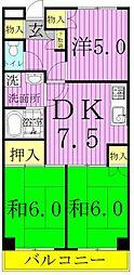 東京都足立区入谷1丁目の賃貸マンションの間取り
