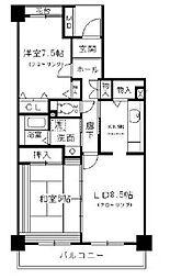 東京都小金井市梶野町3丁目の賃貸マンションの間取り
