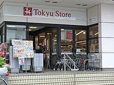 東急ストア洗足店(360m)