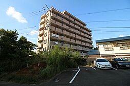 レオンヒルズ[5階]の外観