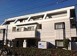 埼玉県越谷市蒲生旭町の賃貸マンションの外観