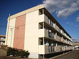 グリーンプラザ3棟[3階]の外観