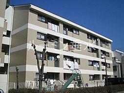 シャトル大津和[4階]の外観