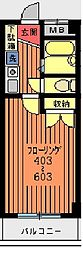 新葉ラピス第三ビル[503号室]の間取り