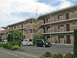 青梅線 福生駅 バス10分 武蔵野駐在所下車 徒歩5分