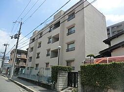 上田マンション[1階]の外観