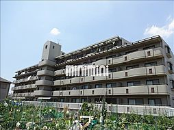 パラサンピア III[5階]の外観