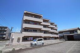 パールハイツ徳行[4階]の外観