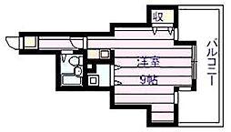ハイネス石川[5階]の間取り