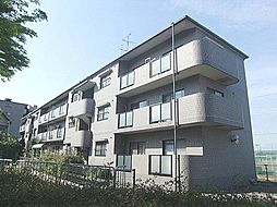 大阪府高石市綾園5丁目の賃貸マンションの外観