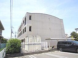南海線 樽井駅 徒歩20分の賃貸マンション
