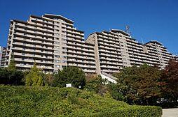 兵庫県宝塚市すみれガ丘1丁目の賃貸マンションの外観