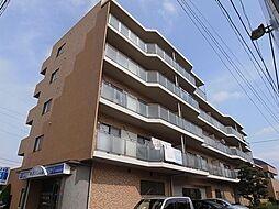 千葉県船橋市薬円台2丁目の賃貸マンションの外観