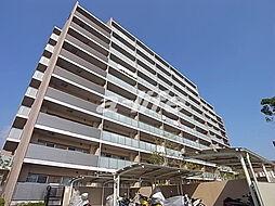 サニープレイス西芦屋2号館[3階]の外観