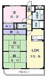 ドミールU[303号室]の間取り