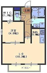 ケーティーハイツ B棟[205号室号室]の間取り