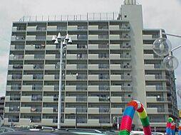 千鳥町アーバンドエル[5階]の外観