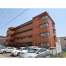 愛知県清須市西枇杷島町片町の賃貸マンションの外観