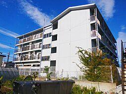 滋賀県東近江市五個荘北町屋町の賃貸マンションの外観