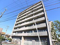 パインエクセレント[4階]の外観