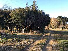 前面道路 東側2.4m道路に接道しています。