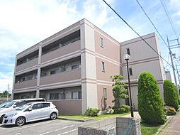 大阪府貝塚市澤の賃貸マンションの外観