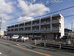 静岡県沼津市鳥谷の賃貸マンションの外観