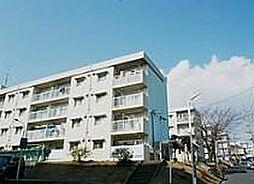 神奈川県伊勢原市八幡台1丁目の賃貸マンションの外観