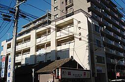 宮城野原駅 3.6万円