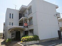 大阪府泉大津市宮町の賃貸マンションの外観