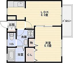 ドリーム5 C棟[1階]の間取り