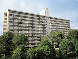 UR梨香台[7-1102号室]の外観