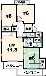 徳島県徳島市かちどき橋4丁目の賃貸マンションの間取り