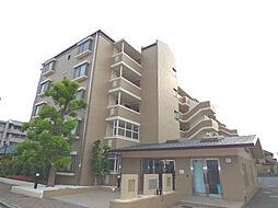 埼玉県さいたま市浦和区大東1丁目の賃貸マンションの外観