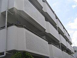 コーポナカイ[4階]の外観