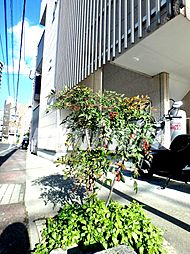 鹿児島県鹿児島市下荒田1丁目の賃貸アパートの外観