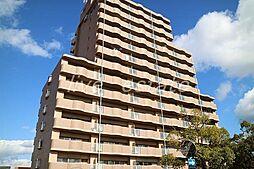 アメニティハイツ14[4階]の外観