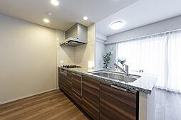 天然石のカウンタートップ、食器洗浄乾燥機、浄水器内蔵型水栓、ガラストップコンロを採用