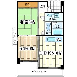 アルトピノ姫島[701号室]の間取り