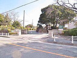 井田小学校650m