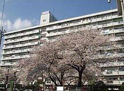 鹿島田グリーンハイツ[511号室]の外観