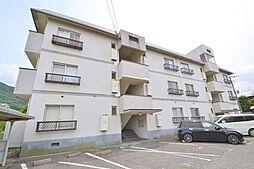 ニューハイツ赤坂[302号室]の外観