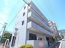 六甲ヒノキ