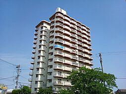 手柄コーポ1号館[9階]の外観
