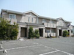 和歌山県和歌山市木ノ本の賃貸マンションの外観