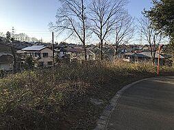 千葉県佐倉市城