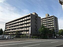 パティオ北加賀屋[4階]の外観