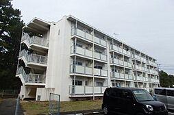 福岡県古賀市花見東3丁目の賃貸マンションの外観