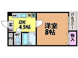 愛媛県松山市正円寺3丁目の賃貸マンションの間取り